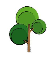 Green tree foliage nature flora botanical vector