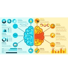 Left and right brain infographics vector