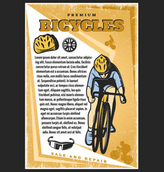 colored vintage cycling poster vector image