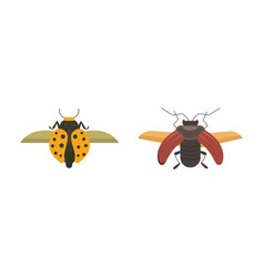Insects flat style design icons collection vector