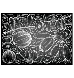 Hand drawn of fresh fruits on chalkboard backgroun vector