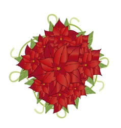 Poinsettia flower 2 vector