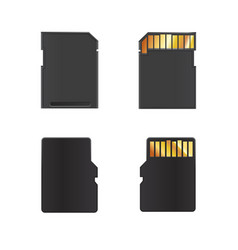 Realistic mock-up of memory cards vector