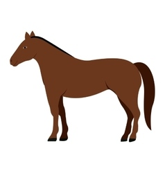 Silhouette colorful with brown horse vector