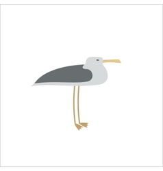Single seagull vector