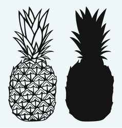 Ripe tasty pineapple vector