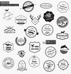 Premium graphic elements vector