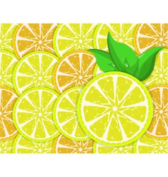 Orange and lemon slices vector