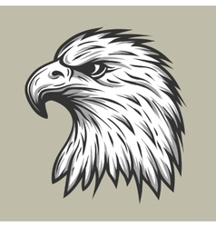 Eagle head in profile vector