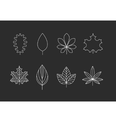 Outlined leaves icons vector