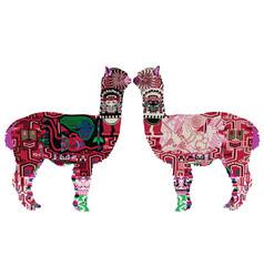 Two peruvian llamas vector
