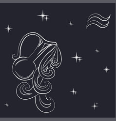Zodiac aquarius is the starry sky vector