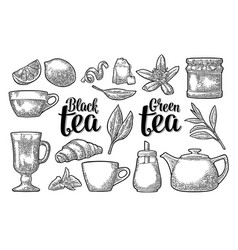 set tea with lettering vintage engraving vector image vector image