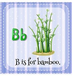Flashcard letter b is for bamboo vector