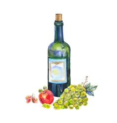 Still life with a bottle of wine grapes and apple vector