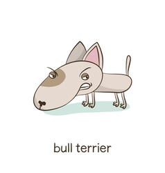 Bull terrier dog character isolated on white vector