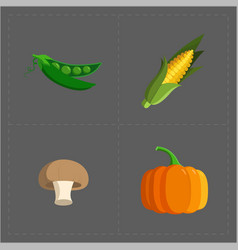 colorful vegetable icon set on grey background vector image