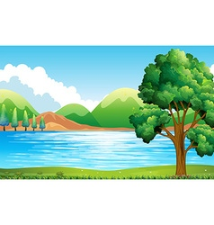 Lake and park vector image vector image