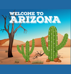 cactus plants in arizona state vector image