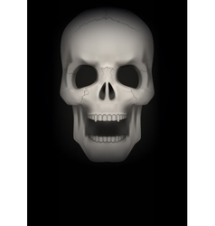 Dark background of human skull with open mouth vector