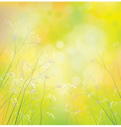 Background wildflowers vector