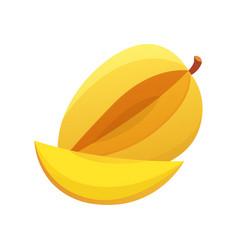 Mango yellow fruit isolated vector