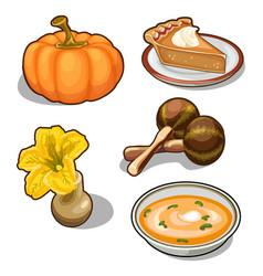 pumpkin set five elements on white background vector image