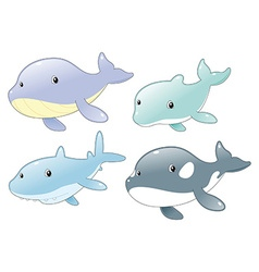 Dolphin shark whale and killer whale vector