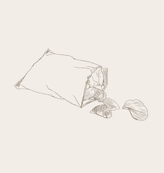 Potato chips packaging bag of chip sketch vector