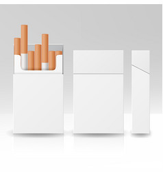 blank pack package box of cigarettes 3d vector image vector image