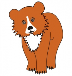 cartoon young bear vector image