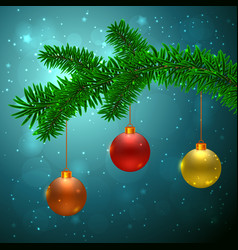 fir tree with 3 christmas balls vector image