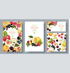 Fruit and berry banners set vector