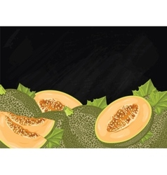 Melon fruit composition on chalkboard vector