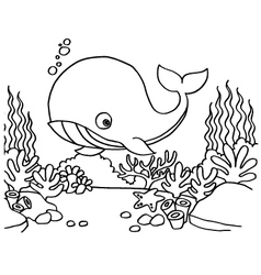 Whales Coloring Pages vector image vector image