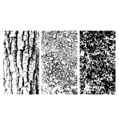 Wooden bark stone and moss texteres vector