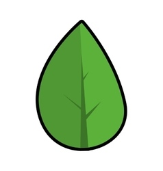Green leaf icon nature and plant design vector