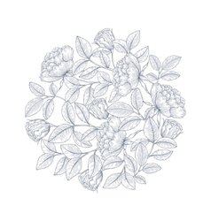 Decorative english garden rose vector image