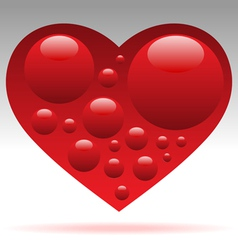 heart with blood cells vector image vector image