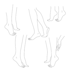 Womans legs female bare feet set vector image