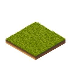 Grass isometric vector