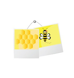 Sweet and cute bee and honey vector