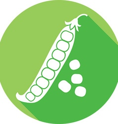 Green pea icon vector