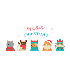 Merry christmas greeting card with cute cats vector