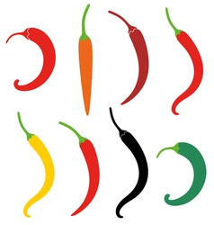 Chile pepper vector