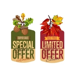 Autumn sale labels set special and limited offer vector