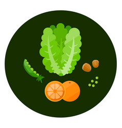 health food icons in a flat style vector image