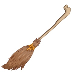 Old broom vector