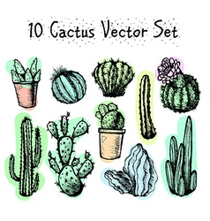 Hand drawn isolated cactuses set vector