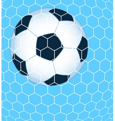 Ball in the net vector